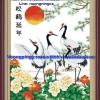 นกกระยางครอสติสจีนพิมพ์ลาย