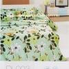 ชุดเครื่องนอน ผ้าปูที่นอน ทิวลิป-ดีไลท์ Tulip-Delight รหัส DL003