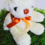 ตุ๊กตาหมีตัวน้อย