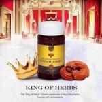 เห็ดหลินจือ King of Herbs ราชาแห่งสมุนไพรเพื่อสุขภาพ