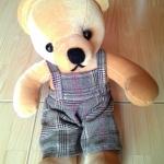 ตุ๊กตาหมีขนสั้น