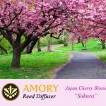 กลิ่นหอมหวานอ่อนๆของดอกซากุระ ช่วยทำให้รู้สึกผ่อนคลาย สดชื่น แฝงความรักโรแมนติก