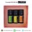Gift Set ของขวัญ Peppermint/Bergamot/Orange Essential Oil น้ำมันหอมระเหยเข้มข้น thumbnail 3
