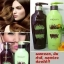 HyBeauty Vitalizing Hair Scalp Shampoo and Conditioner ศูนย์จำหน่ายราคาส่ง ดูแลเส้นผม จากสมุนไพรธรรมชาติแท้ ส่งฟรี thumbnail 4