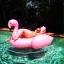 ห่วงยางเล่นน้ำฟลามิงโก้ จัมโบ้ แพยางเป่าลมแฟนซี Inflatable Flamingo Pool Float+งานเมกา thumbnail 2