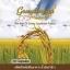 Gomphrena กอมฟลีนา ศูนย์จำหน่ายราคาส่ง น้ำมันรำข้าวจมูกข้าว ส่งฟรี thumbnail 1