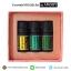 Gift Set ของขวัญ Lemongrass/Eucalyptus/Bergamot Essential Oil น้ำมันหอมระเหยเข้มข้น thumbnail 2