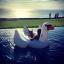 ห่วงยางเล่นน้ำหงส์ขาว บิ๊กไซส์ Gian Swan Inflatable thumbnail 4